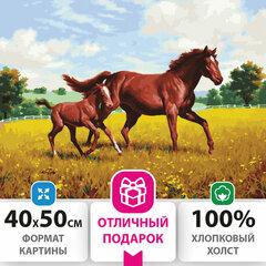 """Картина по номерам 40х50 см, ОСТРОВ СОКРОВИЩ """"Лошади на лугу"""", на подрамнике, акриловые краски, 3 кисти, 662464"""