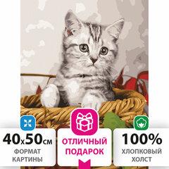 """Картина по номерам 40х50 см, ОСТРОВ СОКРОВИЩ """"Котёнок"""", на подрамнике, акриловые краски, 3 кисти, 662468"""
