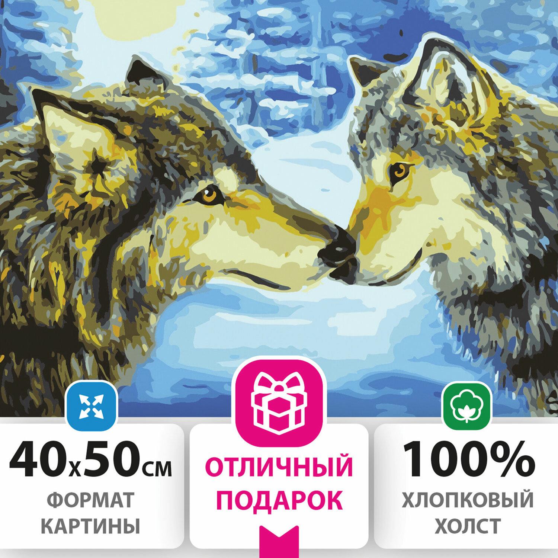 """Картина по номерам 40х50 см, ОСТРОВ СОКРОВИЩ """"Волки"""", на подрамнике, акриловые краски, 3 кисти, 662479"""